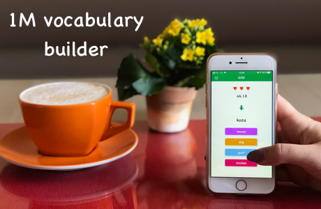 1M vocabulary builder